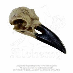 Crâne Corbeau en Résine